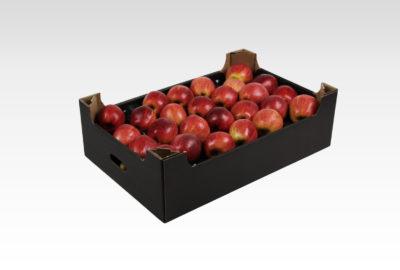 13 kg 2 wytłoczka Gala Royal jabłko
