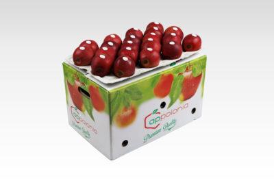 18 kg bushel Compact Red Jonaprince jabłko