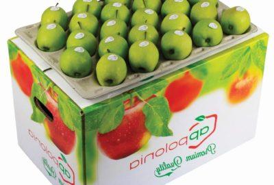 18 kg bushel standard Golden Delicious Appolonia jabłko