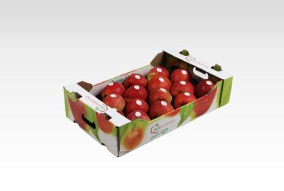 4 kg 1 wytłoczka Szampion Appolonia jabłko