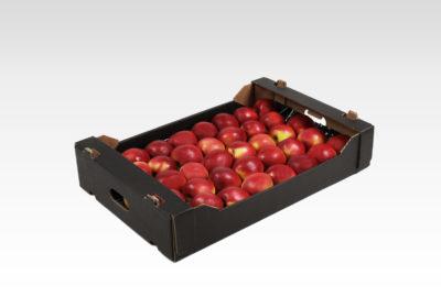 6 kg 1 wytłoczka Gala Must jabłko