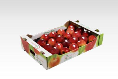 6 kg 1 wytłoczka Gala Royal Appolonia jabłko