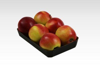 Tacka 6 szt Gala Must jabłko